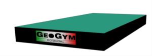 modulo GeoGym